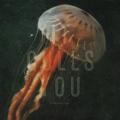 Envy Corps - It Culls You