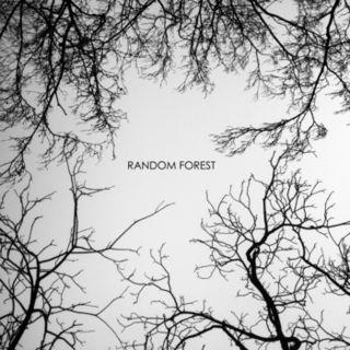 Random Forest - Random Forest