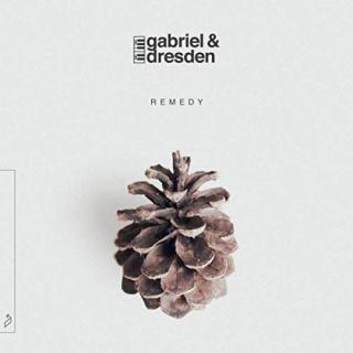 Gabriel & Dresedn - Remedy